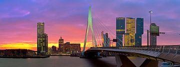 Rotterdam in vuur en vlam van Anton de Zeeuw
