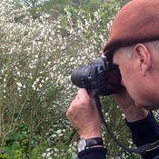 Harry Siegers profielfoto