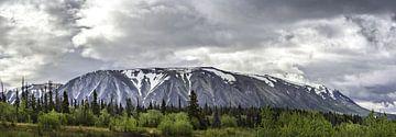 Langgerekte berg in Alaska onder een donkere wolk van Rietje Bulthuis