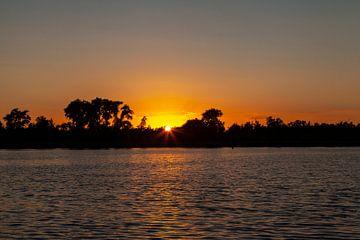 Zonsondergang in de Biesbosch van Nel Diepstraten