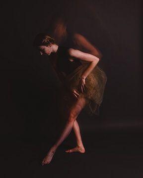 Ballerina in Bewegung 01 von FotoDennis.com