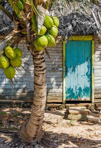 Cuba Cabin van