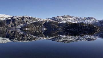 Spiegel meer van Jane Lin Ness