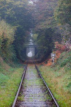 tunnel in de natuur von Marcel Derweduwen