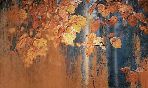 Schilderachtige roestige herfst blaadjes