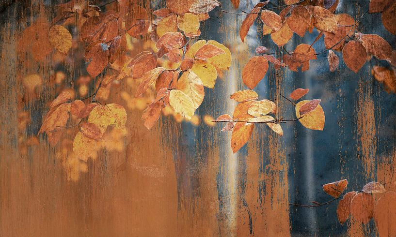 Schilderachtige roestige herfst blaadjes van Rob Visser