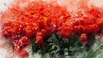 Rote Tulpen von Carla van Zomeren