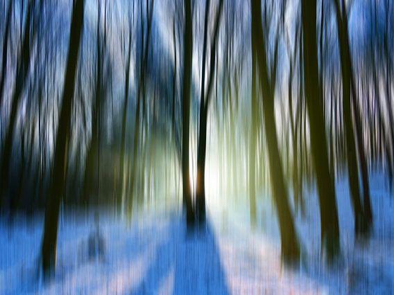 Magic winter trees 18