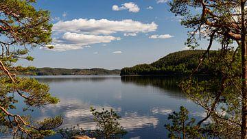 Middag op het meer Stora Le (Zweden) van