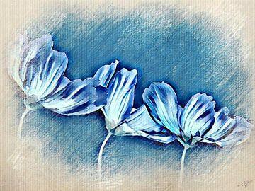 3 Tulpen von Saskia Ben Jemaa