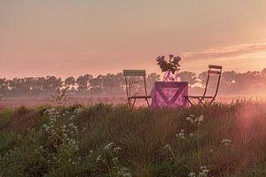 Garden Chair traveling in Zeeland V van Irene van de Wege