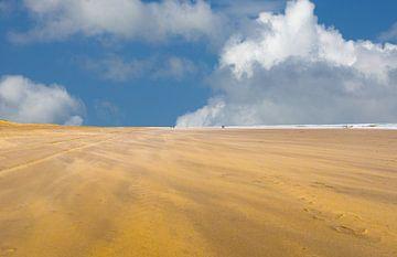 Strand Van Scheveningen  van Brian Morgan
