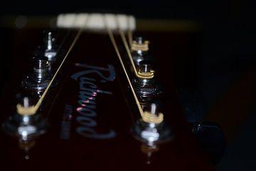 Richwood gitaar snaren van Quint Wijnhoven