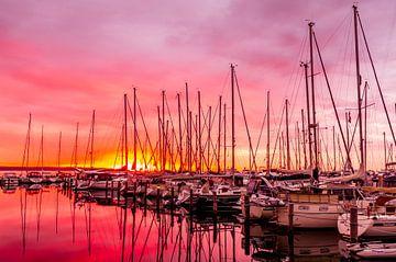 Zeilmasten in het ochendlicht - Juelsminde haven van Tony Buijse