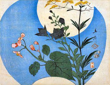 Herfstbloemen bij volle maan van Elize Aurik