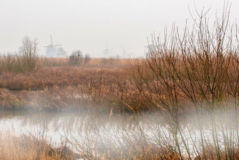 Windmolens aan de Kinderdijk in de mist van Brian Morgan