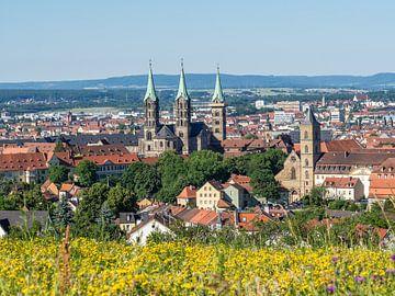skyline van Bamberg in Beieren van Animaflora PicsStock