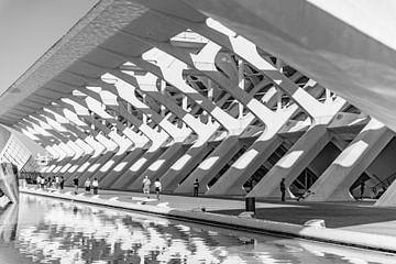 City of Arts and Sciences von Eric de Kuijper