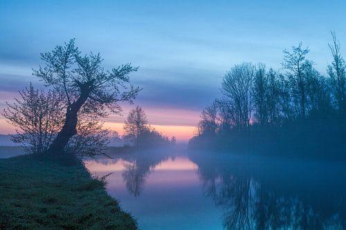 Pastelkleuren voor zonsopkomst in De Onlanden