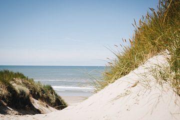 Seegras und Blick auf das Meer bei Schoorl, entlang der niederländischen Küste | Fine Art Naturfotog von Evelien Lodewijks