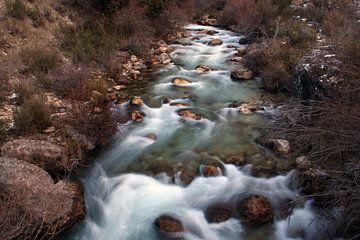 Mysterious River sur Cornelis (Cees) Cornelissen
