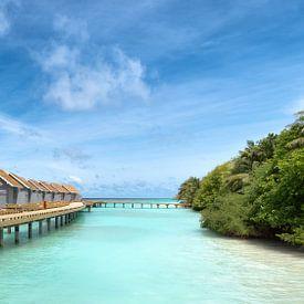 Watervilla's op de Malediven van Martijn Kort