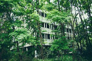 Natuur neemt het over, verborgen stad Pripyat van Caught By Light