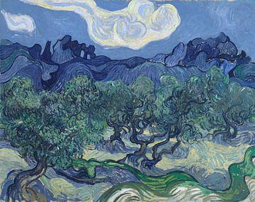 Olivenbäume mit den Alpillen im Hintergrund, Vincent van Gogh