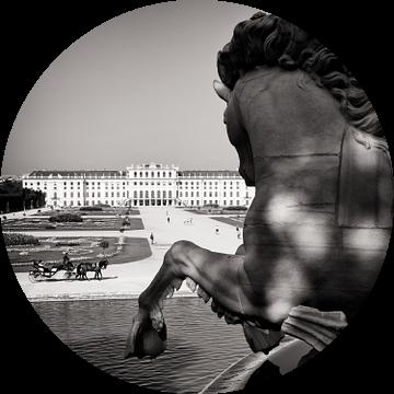 Wenen - Paleis Schönbrunn van Alexander Voss