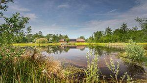 De Poele van Boele in het natuurgebied het Curringherveld te Kornhorn (Westerkwartier) van