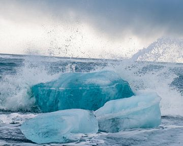 IJsblok in zee van Annika Koole