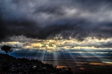 Zonnestralen in Ngorongoro krater in Tanzania van