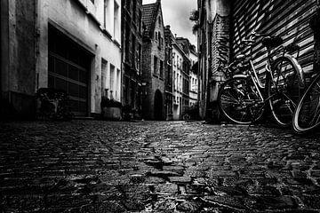 Moody Antwerpen van Boris Van Berkel