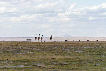 Dieren in het landschap van Kenia. van Monique van Helden