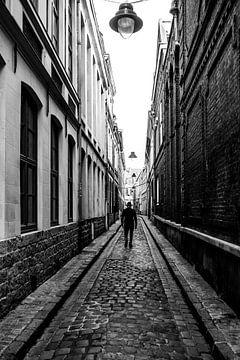 Rijsel von Filip Vanluchene