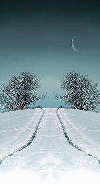 Wintersymmetrie van 7R.Collection