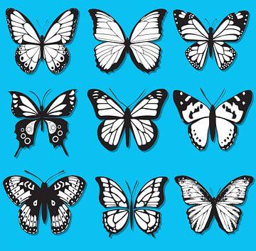 Schmetterlinge schwarz-weiß auf blauem Hintergrund von sarp demirel