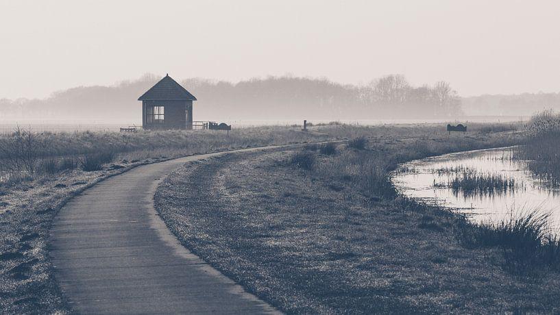 Het pad van Martzen Fotografie