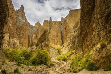 Clay Cliffs bij Omarara, Nieuw Zeeland van Rietje Bulthuis