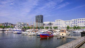 afgemeerde jachten in Willemdok in Antwerpen op een zomerse dag van Tony Vingerhoets