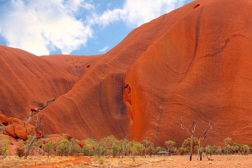 Uluru close up van Inge Hogenbijl