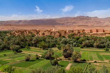 Skoura-Oase in Marokko von Easycopters