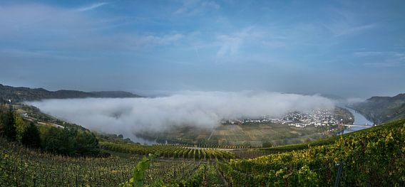 Herfst Panorama van de Moezel bij Trittenheim