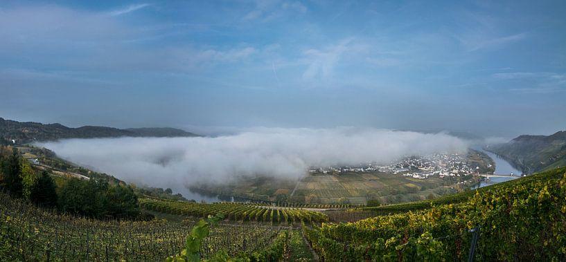 Herfst Panorama van de Moezel bij Trittenheim van Patrick Verhoef