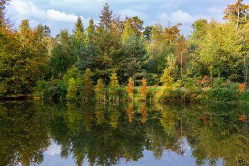 Herbstliche Träume von Huseyin Bingol