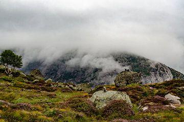 Opkomende mist in de bergen van Noorwegen. sur