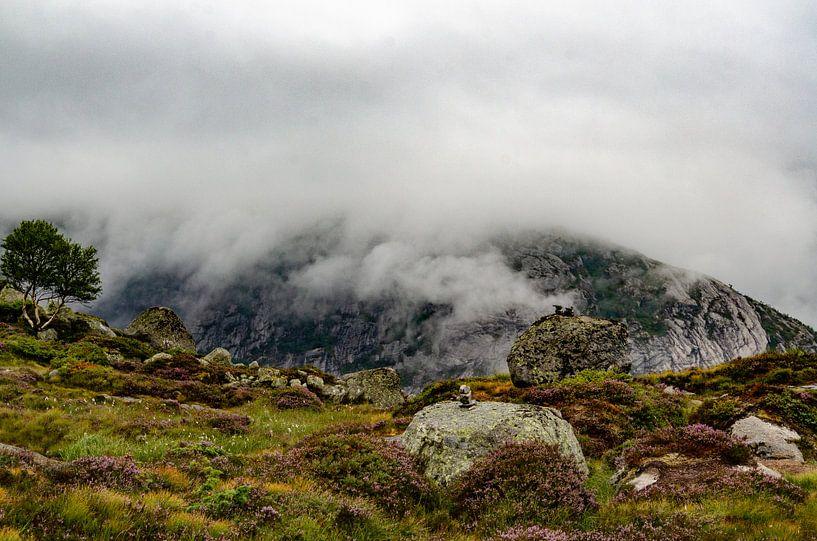 Opkomende mist in de bergen van Noorwegen. van Marly van Gog