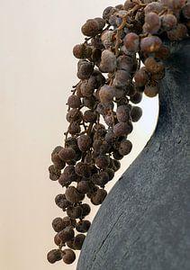 Minimalistisch stilleven van jeneverbes op grijze kruik van Humphry Jacobs