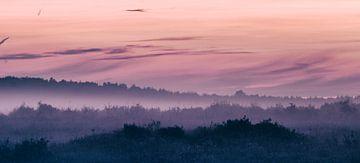 mist in avondlicht, een feest in de kleuren roze en oranje van