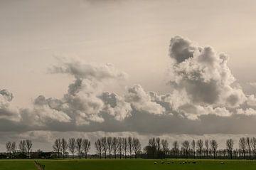 Hollands landchap van Nancy van Verseveld